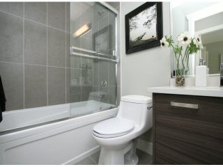 """Photo 20: 3 14177 103 Avenue in Surrey: Whalley Townhouse for sale in """"THE MAPLE"""" (North Surrey)  : MLS®# F1425574"""
