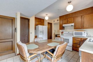 Photo 7: 147 Templevale Place NE in Calgary: Temple Detached for sale : MLS®# A1144568