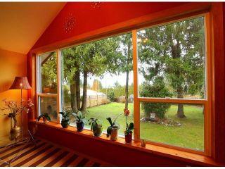 Photo 4: 13231 112B AV in Surrey: Bolivar Heights House for sale (North Surrey)  : MLS®# F1304749