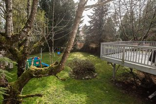 Photo 10: 9164 146A Street in Surrey: Home for sale : MLS®# R2048578