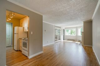 """Photo 9: 511 9890 MANCHESTER Drive in Burnaby: Cariboo Condo for sale in """"Brookside Court"""" (Burnaby North)  : MLS®# R2591136"""