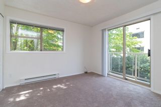 Photo 19: 202 1025 Meares St in : Vi Downtown Condo for sale (Victoria)  : MLS®# 875673