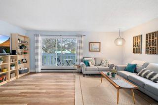 Photo 16: 1 1331 Johnson St in : Vi Fernwood Condo for sale (Victoria)  : MLS®# 862010