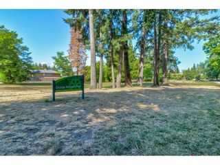 """Photo 33: 104 5565 INMAN Avenue in Burnaby: Central Park BS Condo for sale in """"AMBLE GREEN"""" (Burnaby South)  : MLS®# R2602480"""