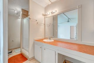 Photo 14: 214 Erin Woods Circle SE in Calgary: Erin Woods Detached for sale : MLS®# A1120105