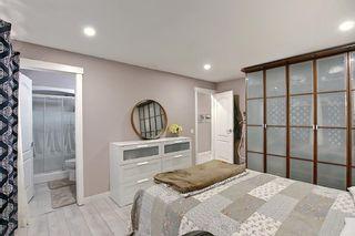 Photo 22: 6511 24 Avenue NE in Calgary: Pineridge Detached for sale : MLS®# A1152283