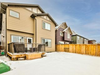 Photo 49: 68 Thoroughbred Boulevard: Cochrane Detached for sale : MLS®# A1071565