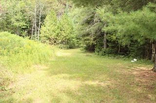 Photo 6: Lt 2 Hwy 121 in Kawartha Lakes: Rural Somerville Property for sale : MLS®# X2986227