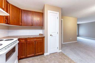 Photo 18: 128 240 SPRUCE RIDGE Road: Spruce Grove Condo for sale : MLS®# E4242398