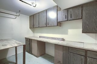 Photo 32: 48 DOVERTHORN Place SE in Calgary: Dover Detached for sale : MLS®# A1023255