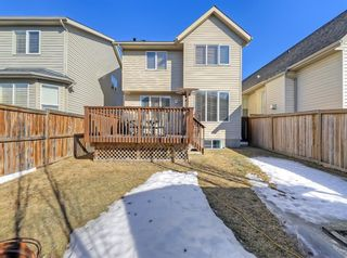 Photo 35: 148 Copperfield Common SE in Calgary: Copperfield Detached for sale : MLS®# A1079800
