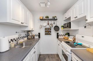 Photo 6: 209 991 Cloverdale Ave in : SE Quadra Condo for sale (Saanich East)  : MLS®# 862557