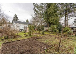 Photo 36: 622 SCHOOLHOUSE Street in Coquitlam: Central Coquitlam House for sale : MLS®# R2531775
