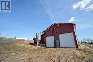 Photo 11: 47260 Homestead RD in Steeves Mountain: Agriculture for sale : MLS®# M133892