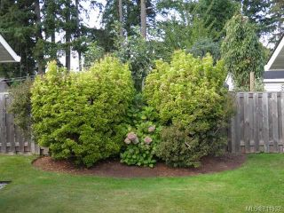 Photo 13: 9 2030 Robb Ave in COMOX: CV Comox (Town of) Row/Townhouse for sale (Comox Valley)  : MLS®# 711932