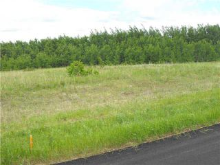 Photo 1: 105 56514 Rd Rg 60 Drive: Rural St. Paul County Rural Land/Vacant Lot for sale : MLS®# E4204217
