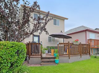 Photo 36: 31 Coventry View NE in Calgary: Coventry Hills Detached for sale : MLS®# A1145160
