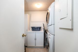 Photo 3: 3460 LANGFORD Avenue in Vancouver: Champlain Heights Townhouse for sale (Vancouver East)  : MLS®# R2063924
