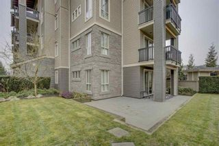 "Photo 14: 125 5655 210A Street in Langley: Salmon River Condo for sale in ""CORNERSTONE NORTH"" : MLS®# R2552598"