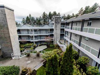 Photo 18: 404 2733 ATLIN PLACE in Coquitlam: Coquitlam East Condo for sale : MLS®# R2419896