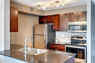 Photo 11: 4207 1317 27 Street SE in Calgary: Albert Park/Radisson Heights Apartment for sale : MLS®# A1126561