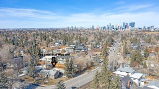 Photo 41: 704 Imperial Way SW in Calgary: Britannia Detached for sale : MLS®# A1081312
