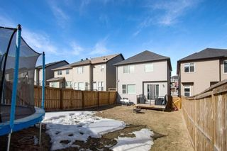 Photo 30: 459 Nolan Hill Drive NW in Calgary: Nolan Hill Detached for sale : MLS®# A1085176