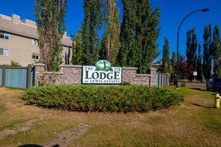 Photo 2: 332 278 SUDER GREENS Drive in Edmonton: Zone 58 Condo for sale : MLS®# E4258444