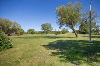 Photo 19: 274 Hazelwood Avenue in Winnipeg: Meadowood Residential for sale (2E)  : MLS®# 1821001