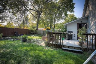 Photo 12: 64 Inman Avenue in Winnipeg: Single Family Detached for sale (2D)  : MLS®# 1926807
