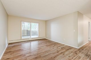 Photo 4: 103 11 Dover Point SE in Calgary: Dover Apartment for sale : MLS®# A1144552