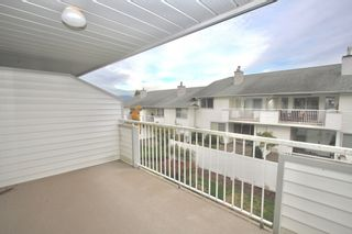 Photo 6: 44 3055 Trafalgar Street in Abbotsford: Central Abbotsford Townhouse for sale : MLS®# R2623352