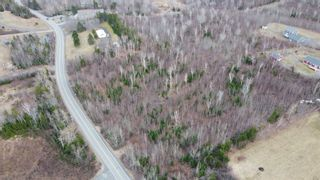 Photo 4: Lot 12 Pictou Landing Road in Little Harbour: 108-Rural Pictou County Vacant Land for sale (Northern Region)  : MLS®# 202106888