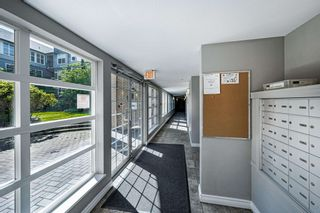"""Photo 5: #407 20200 56 Avenue in Langley: Langley City Condo for sale in """"The Bentley"""" : MLS®# R2598723"""