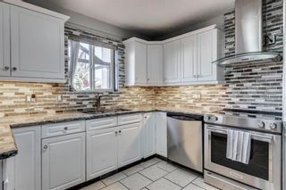 Photo 9: 283 Applestone Park SE in Calgary: Applewood Park Detached for sale : MLS®# A1087868