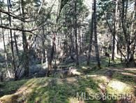 Photo 11: Lot 170 Halibut Hill in : Isl Mudge Island Land for sale (Islands)  : MLS®# 866549