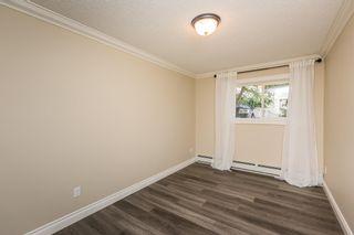 Photo 20: 102 10625 83 Avenue in Edmonton: Zone 15 Condo for sale : MLS®# E4254478