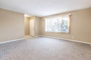 Photo 5: 10175 89 Street in Edmonton: Zone 13 House Duplex for sale : MLS®# E4222726