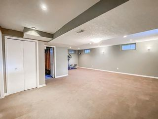 Photo 28: 3808 12 Street SW in Calgary: Elbow Park Detached for sale : MLS®# A1153386