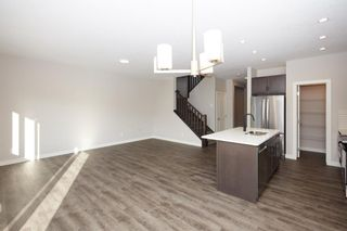 Photo 21: 51 Walden Place SE in Calgary: Walden Detached for sale : MLS®# A1051538