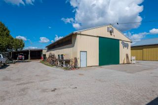 Photo 5: 17731 WESTMINSTER Highway in Richmond: East Richmond Agri-Business for sale : MLS®# C8038030
