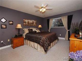 Photo 10: 7718 Grieve Cres in SAANICHTON: CS Saanichton House for sale (Central Saanich)  : MLS®# 579266