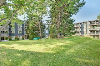 Photo 30: 327 820 89 Avenue SW in Calgary: Haysboro Apartment for sale : MLS®# A1145772
