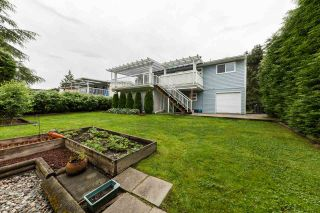Photo 19: 22875 STOREY Avenue in Maple Ridge: East Central House for sale : MLS®# R2179109