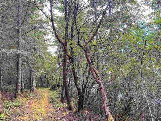 Photo 24: 740 EAGLES REST Lane: Galiano Island Land for sale (Islands-Van. & Gulf)  : MLS®# R2586632