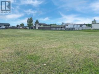 Photo 4: 4412 46 Avenue in Rycroft: Vacant Land for sale : MLS®# A1114343