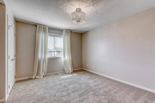 Photo 17: 454 COPPERPOND Boulevard SE in Calgary: Copperfield Detached for sale : MLS®# A1097323