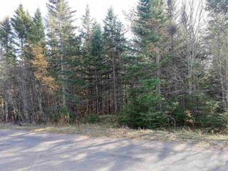 Photo 5: Lot 1 Hirem Lynds Road in Central North River: 104-Truro/Bible Hill/Brookfield Vacant Land for sale (Northern Region)  : MLS®# 202122060