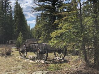 Photo 14: 11 Arowen Campground: Rural Mountain View County Residential Land for sale : MLS®# A1080777
