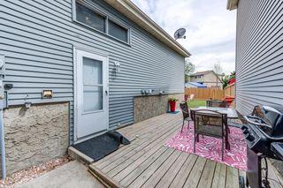 Photo 32: 3613 44 Avenue in Edmonton: Zone 29 House for sale : MLS®# E4246393
